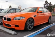 Orange BMW M5 is very outstanding!