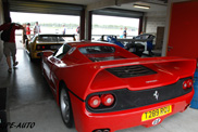 500 Ferrari&#039;s against cancer