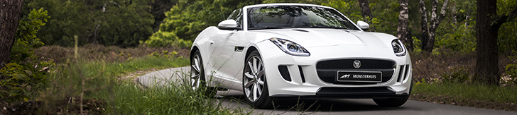 Special: our first date with the Jaguar F-Type